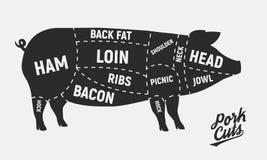 Cortes de la carne Cortes de cerdo Cartel del vintage para la carnicería Diagrama retro Ilustración del vector ilustración del vector