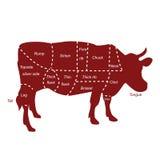 Cortes de la carne de vaca Fotografía de archivo