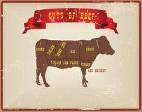 Cortes de la carne de vaca libre illustration
