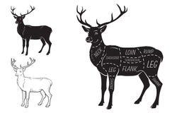 Cortes de la carne de los ciervos con los elementos y los nombres Negro aislada en el fondo blanco Carnicero Shop ilustración del vector