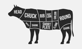 Cortes de la carne Cortes de la carne de vaca Silueta de la vaca aislada en el fondo blanco Cartel del vintage para la carnicería