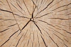 Cortes de madera Imagenes de archivo