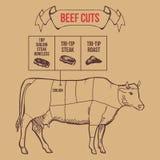 Cortes del carnicero del vintage del vector del esquema de la carne de vaca Fotografía de archivo libre de regalías