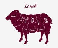 Cortes do diagrama do cordeiro ou da carne de carneiro Imagens de Stock