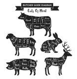 Cortes do guia do carniceiro do diagrama da carne ilustração royalty free
