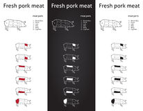 Cortes frescos da carne de carne de porco ajustados