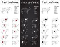 Cortes frescos de la carne de la carne de vaca fijados ilustración del vector