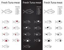 Cortes frescos de la carne del atún fijados ilustración del vector