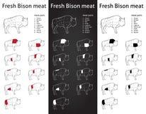 Cortes frescos de la carne del bisonte fijados Imagenes de archivo