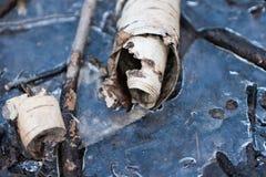 Corteza de abedul en el charco congelado de abril del bosque Foto de archivo libre de regalías