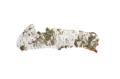 Corteza de abedul en fondo aislado blanco Imagen de archivo