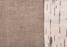 Corteza de abedul en fondo de la arpillera Imagen de archivo libre de regalías