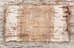 Corteza de la arpillera y de abedul en la madera vieja Imágenes de archivo libres de regalías