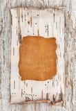 Corteza del cuero y de abedul en la madera vieja Fotos de archivo