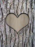 Corteza del tronco y corazón del amor Foto de archivo