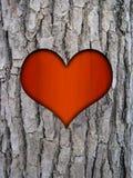 Corteza del tronco y corazón del amor Fotografía de archivo libre de regalías