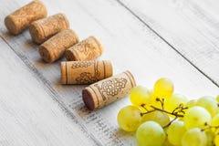 Cortiça da uva e do vinho Fotografia de Stock