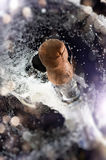 Cortiça de Champagne Fotografia de Stock