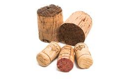Cortiça do vinho isolada fotografia de stock royalty free