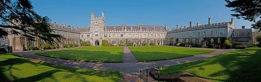 Cortiça do University College Foto de Stock