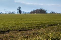 Cortijo aislado, prado verde, árboles en campo y azul Foto de archivo