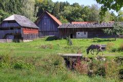 Cortijo alemán con el burro Foto de archivo