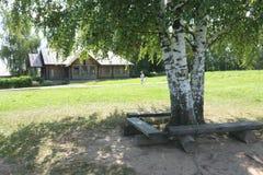 Cortijo con árboles de abedul y un banco Foto de archivo
