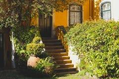 Cortile accogliente con una casa gialla e un giardino fotografia stock