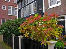 Cortile a Amsterdam Fotografie Stock