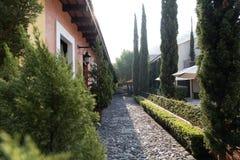 Cortile con le piante verdi e le pareti variopinte fotografia stock