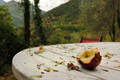 Cortile della casa della montagna in autunno Fotografie Stock