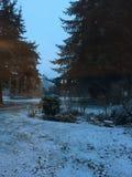Cortile di Snowy Fotografia Stock Libera da Diritti