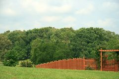 Cortile e foresta Fotografie Stock