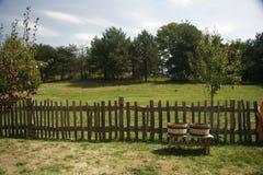 Cortile rurale. Immagine Stock