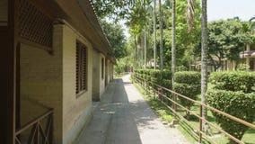 Cortile verde dell'hotel in Asia Villaggio nel parco nazionale di Chitwan, Nepal video d archivio