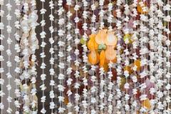 Cortina de puerta Fotografía de archivo libre de regalías