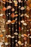 Cortina del shell Fotografía de archivo libre de regalías