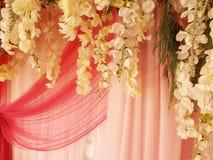 Cortina e flores bonitas Imagem de Stock Royalty Free