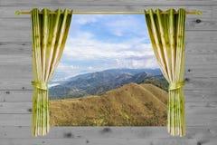 Cortina verde hermosa abierta en la madera, fondo del bosque Fotos de archivo libres de regalías