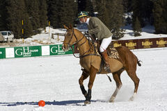 Cortina winter polo cup 2008. Practice Royalty Free Stock Photography