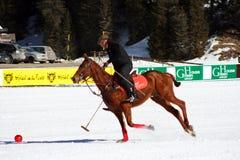 Cortina winter polo cup 2008. Practice Stock Photo