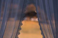 cortinas Imagens de Stock