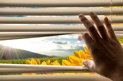 Cortinas da abertura da mão com opinião bonita da paisagem Foto de Stock