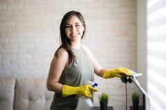 Cortinas de janela alegres da limpeza da dona de casa Imagens de Stock Royalty Free