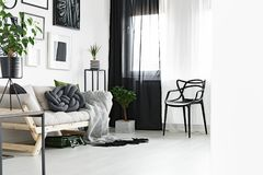 Cortinas preto e branco Foto de Stock Royalty Free