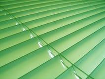 Cortinas verdes do Pastel Fotografia de Stock
