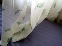 Cortinas y hojas Foto de archivo libre de regalías