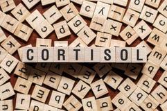 Cortisol woordconcept royalty-vrije stock afbeeldingen