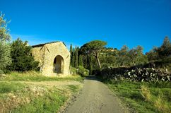 Cortona countryside Stock Photography