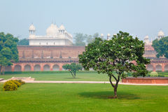 Cortyard in Red Fort in Agra, Uttar Pradesh, India Royalty Free Stock Image